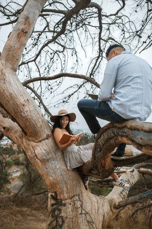 Man in White Dress Shirt and Blue Denim Jeans Sitting on Brown Tree Branch