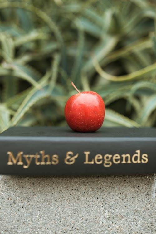 黒と灰色のコンクリート表面に赤いリンゴ
