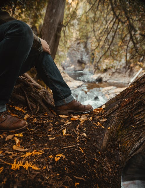 Person in Black Pants and Brown Leather Boots Sitting on Brown Tree Log