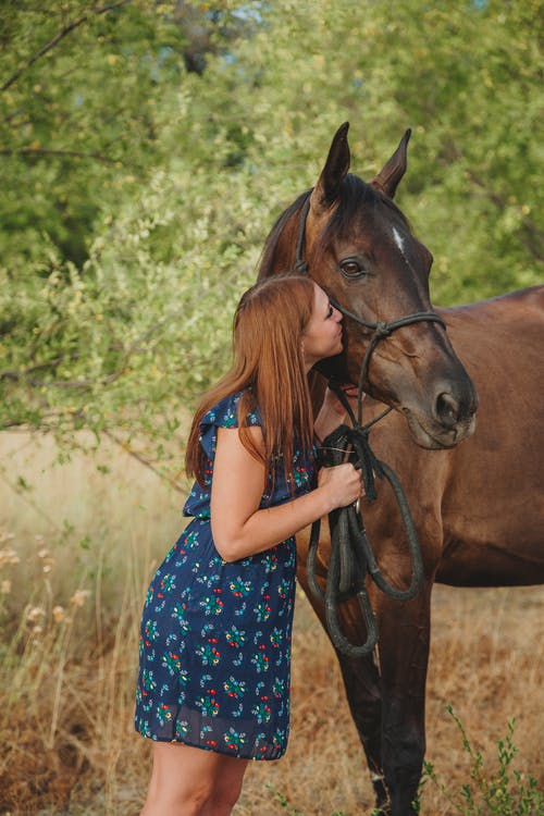 Young lady kissing adorable horse in pasture