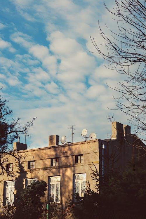 光, 光線, 冬季, 城市 的 免费素材照片