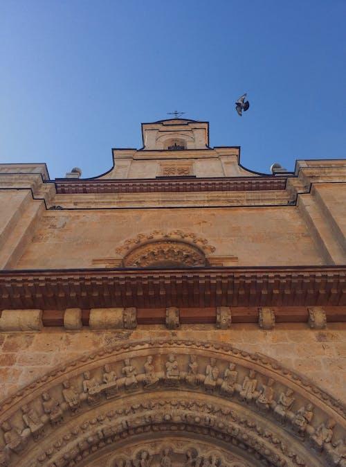 教堂建築, 藍天, 鳥 的 免費圖庫相片