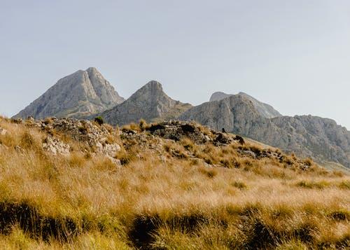 คลังภาพถ่ายฟรี ของ กลางแจ้ง, ภูมิทัศน์, ภูมิประเทศ, ภูเขา