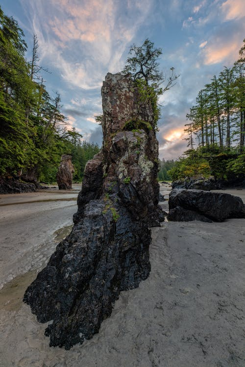 Brown and Green Rock Formation Near Green Trees