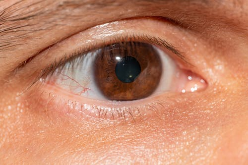Brown Eye in Close Up Photography