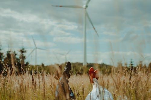 Faceless people resting in field by wind turbines under sky