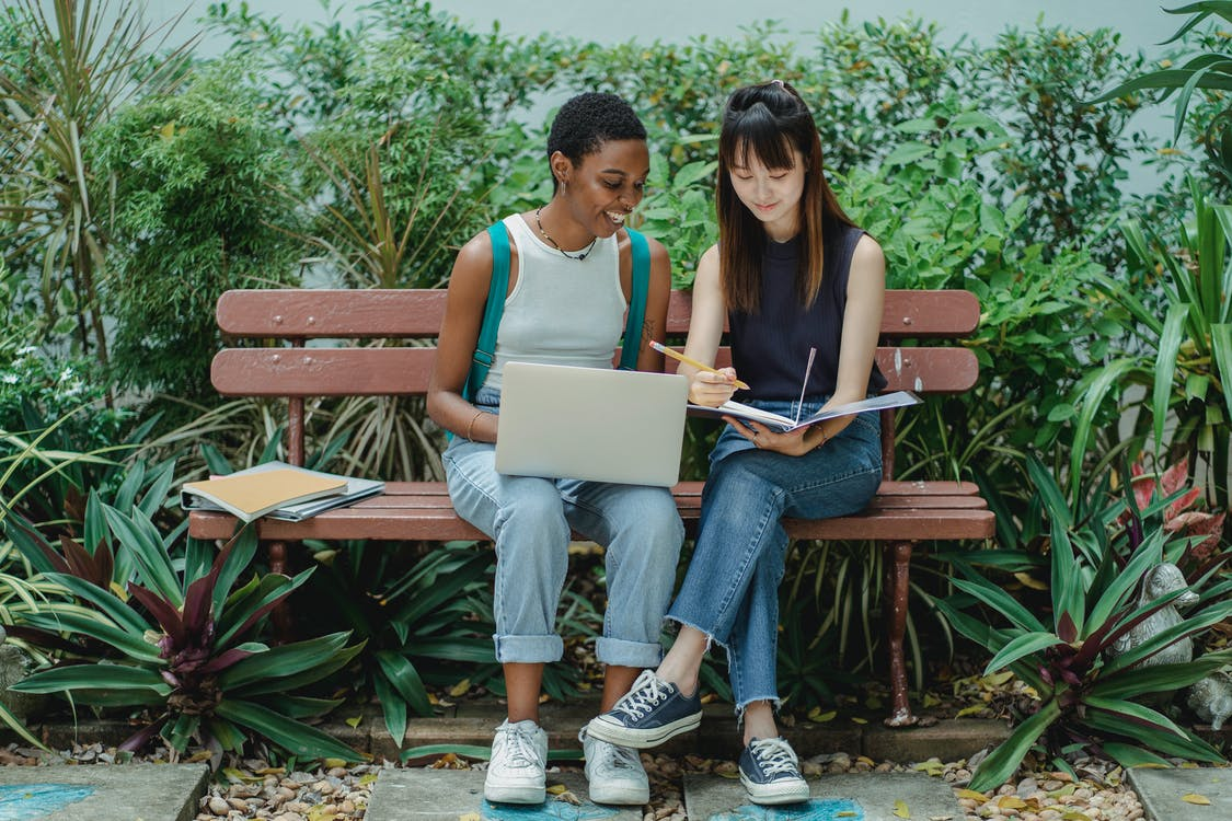 Content diverse female students studying in green park