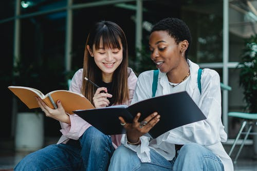 Multiracial female students studying together outside
