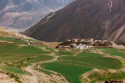 Foto stok gratis bidang, Desa, dusun, gelanggang