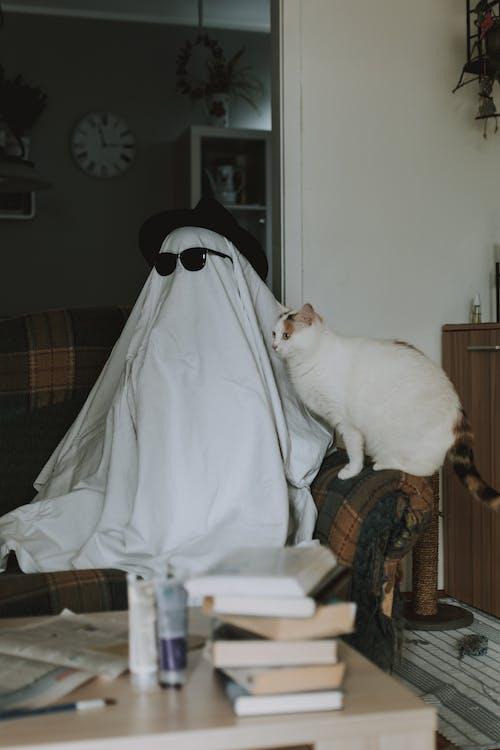 Person hiding under cloth and pretending invisible