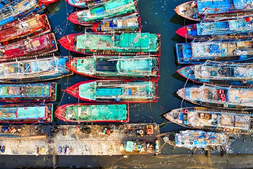 Boats Docked in the Harbor