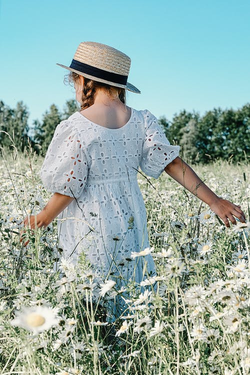 Girl in White and Blue Floral Dress Standing on White Flower Field