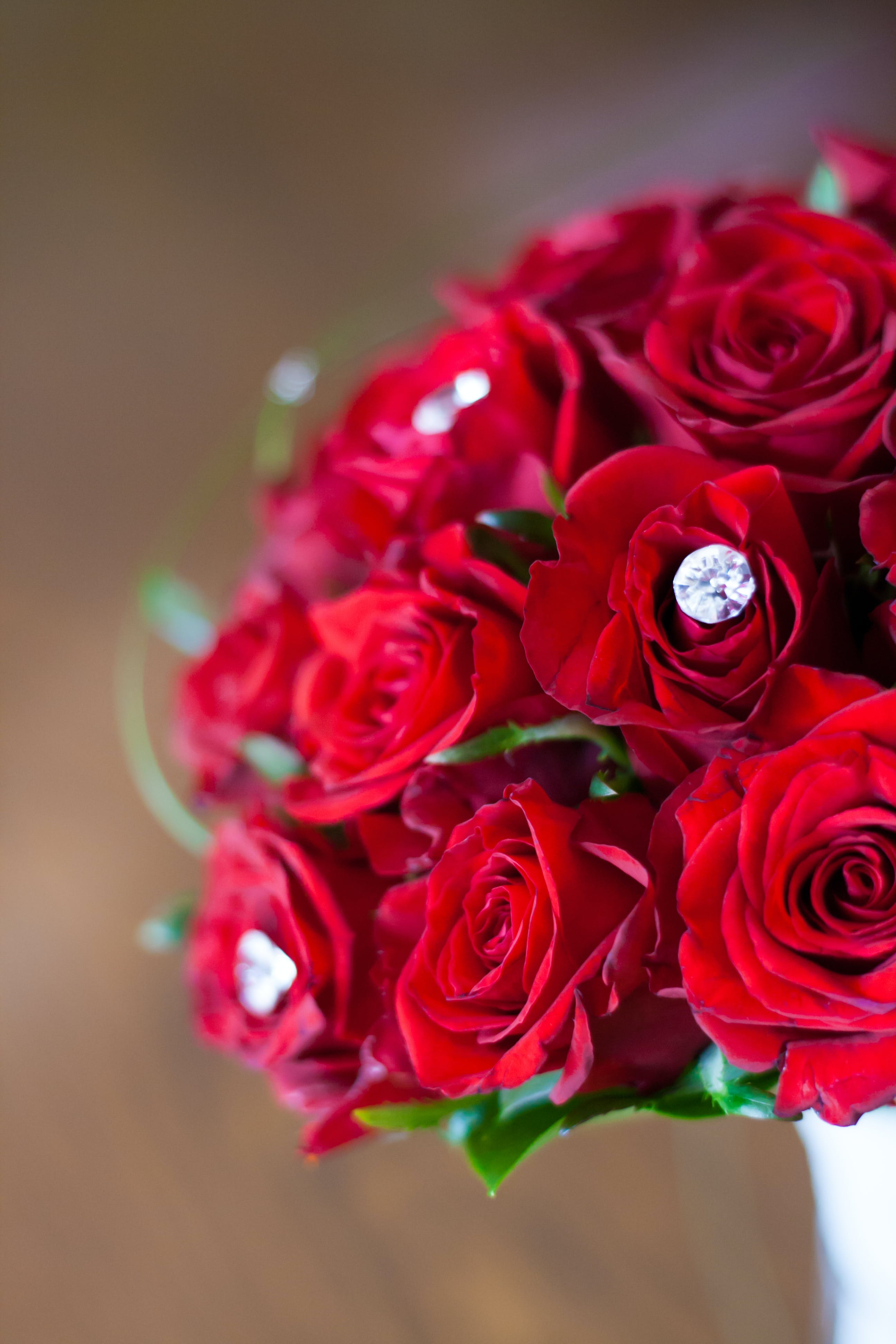 Red roses: bridal bouquet