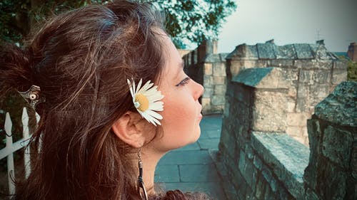 Free stock photo of aromantic, flower, girl