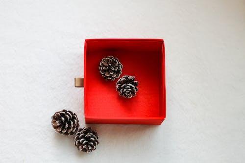 Darmowe zdjęcie z galerii z biżuteria, błyszczący, boże narodzenie, czerwone pudełko