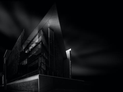 Darmowe zdjęcie z galerii z ciemny, czarno-biały, nastrojowy, sztuka