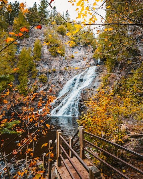 Brown Wooden Bridge over Water Falls