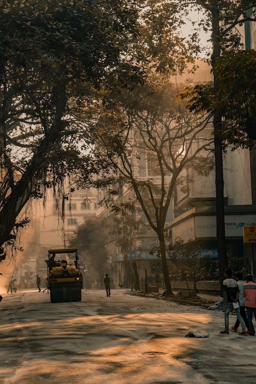 Gratis arkivbilde med by, daggry, falle, forkjølelse