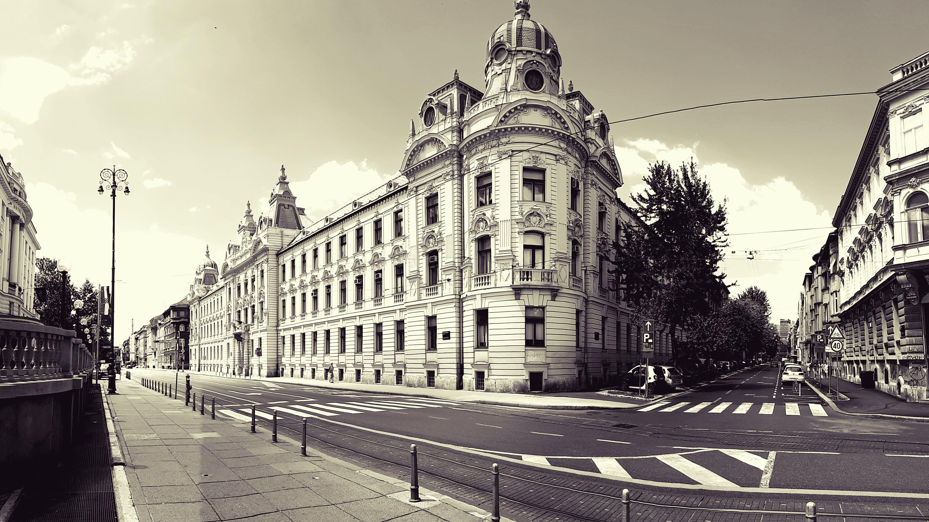 Ingyenes stockfotó építészet, épületek, fák, fekete-fehér témában