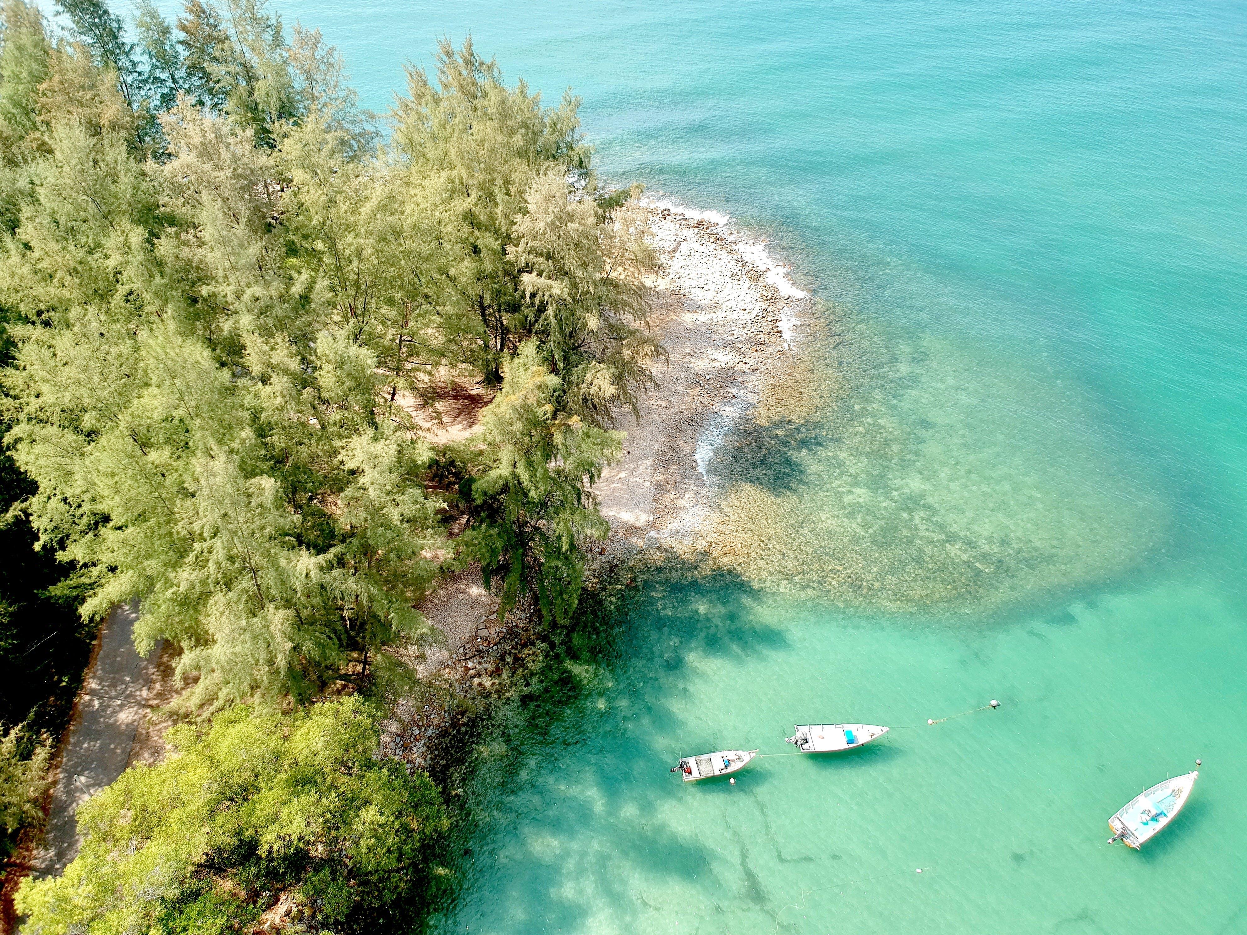 Three White Powerboats Near at Island