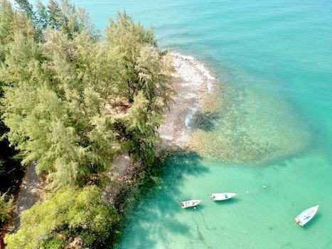 Free stock photo of sea, bird's eye view, nature, beach