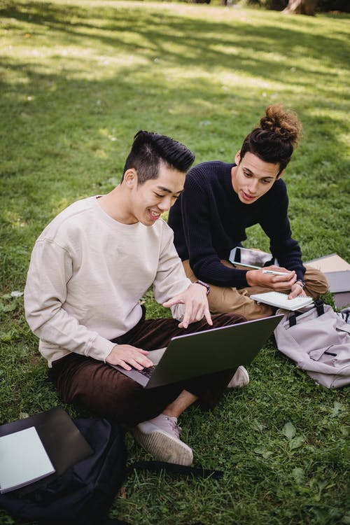 Smiling ethnic male students working on laptop on park meadow
