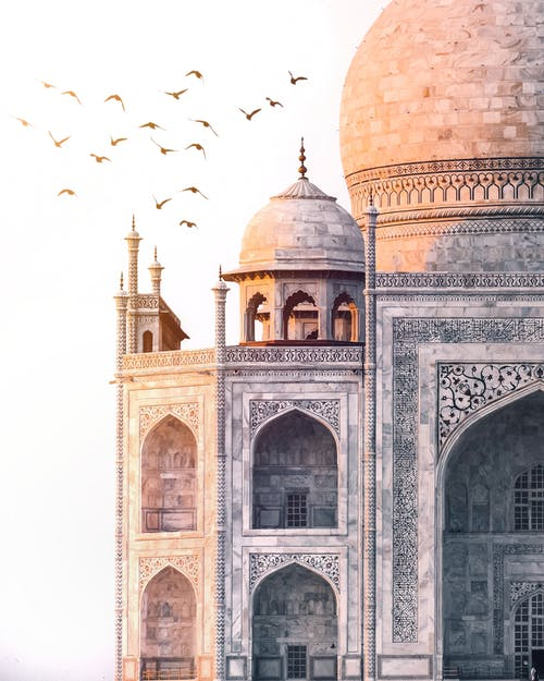 Free stock photo of 7wonders, abstract photo, Agra
