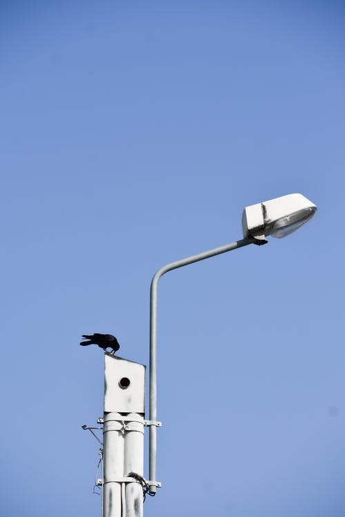 Black crow sitting on metal surveillance camera against bright blue sunny clear sky