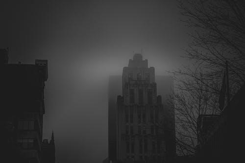 Free stock photo of city, cityscape, cityscrapers