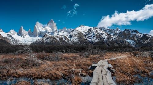 Immagine gratuita di Argentina, arrampicarsi, campeggio, el chalten