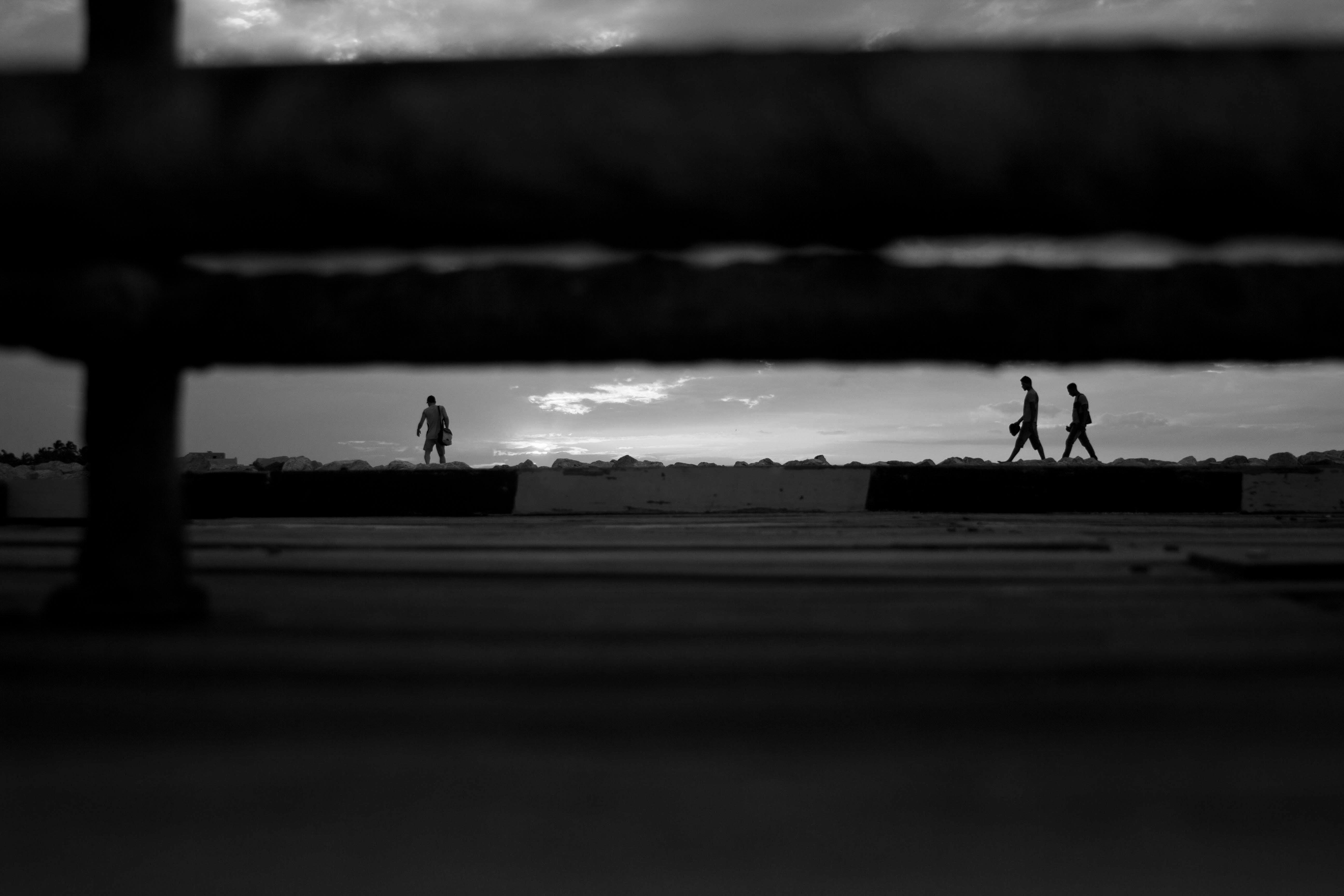 Free stock photo of beach, black, black and white, hidden