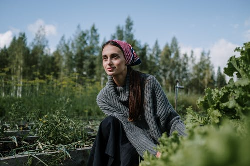 Woman Wearing Gray Knitted Sweater Harvesting Vegetables