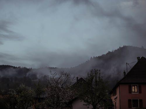 Imagine de stoc gratuită din acasă, acoperit de nori, arbore