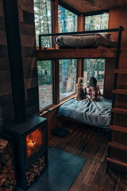 Back view of Faceless brunette and dog sitting on comfy bed near fireplace in cozy room of wooden cottage and looking out window on peaceful lush forest
