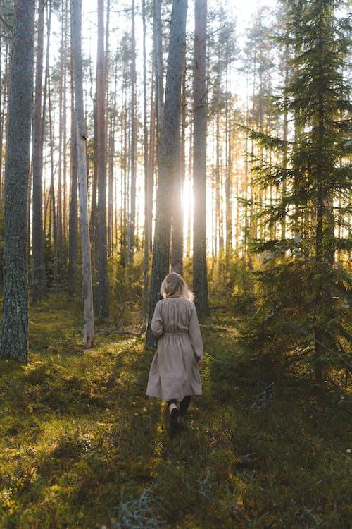Woman in Gray Coat Standing in the Woods