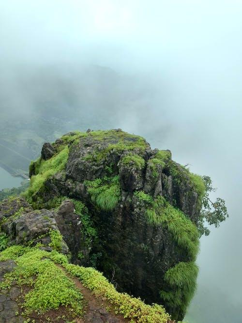 Free stock photo of foggy, green, hd wallpaper