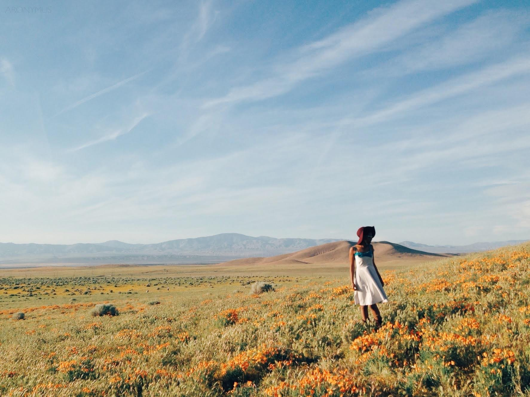 Woman in White Sundress Standing on Flower Field during Daytime