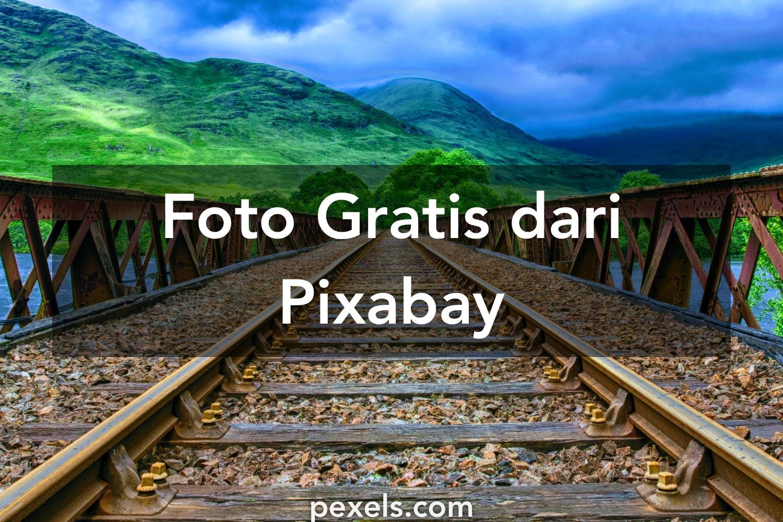 8500 Gambar Keren Pixabay Gratis Terbaik