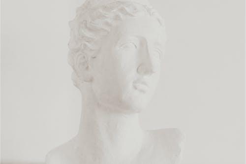 คลังภาพถ่ายฟรี ของ การออกแบบที่เรียบง่าย, ขน, ขาว, คลาสสิก
