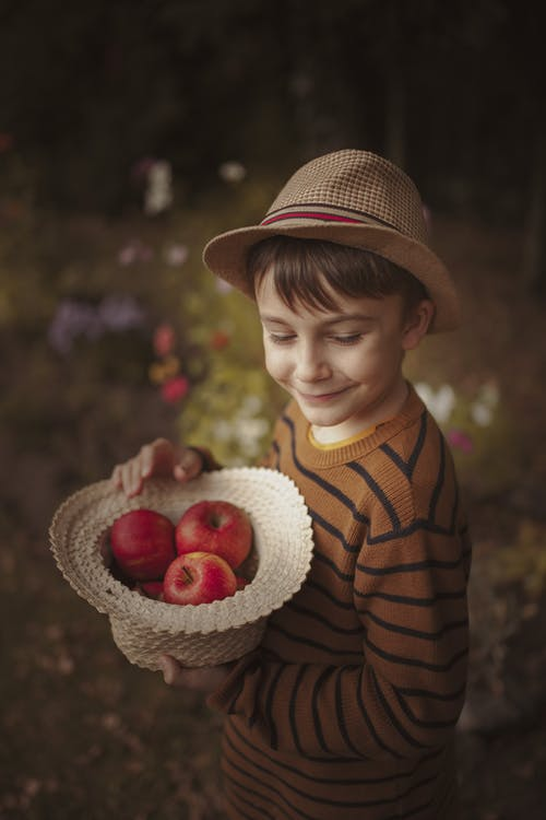 From above side view smiling boy wearing trendy outfit standing in lush park with straw hat in hands filled with red tasty apples