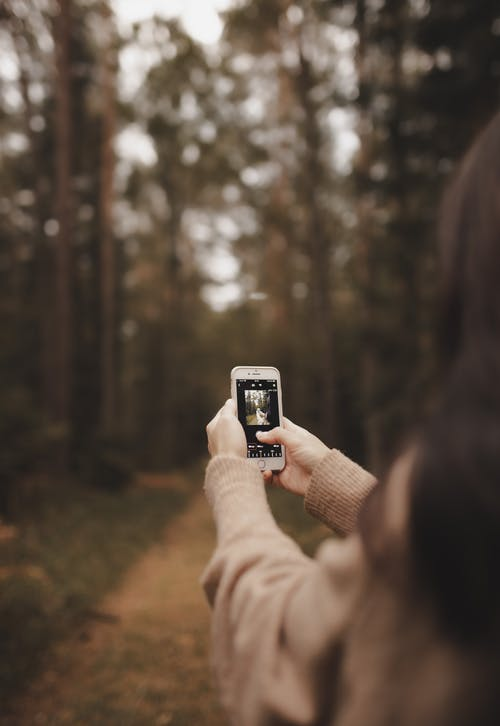 Crop unrecognizable woman taking photo of forest on smartphone