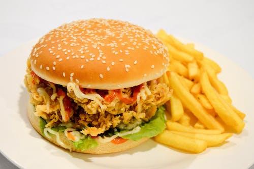 Free stock photo of burger, burger fries, chicken burger