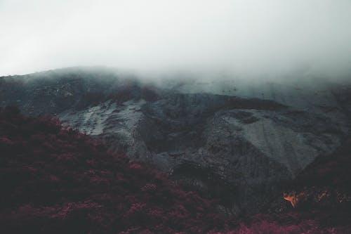 Free stock photo of cloudy, fog, mist, moody