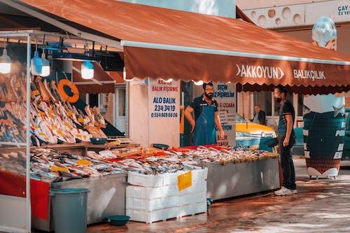 Free stock photo of eskişehir, fisher, fisherman