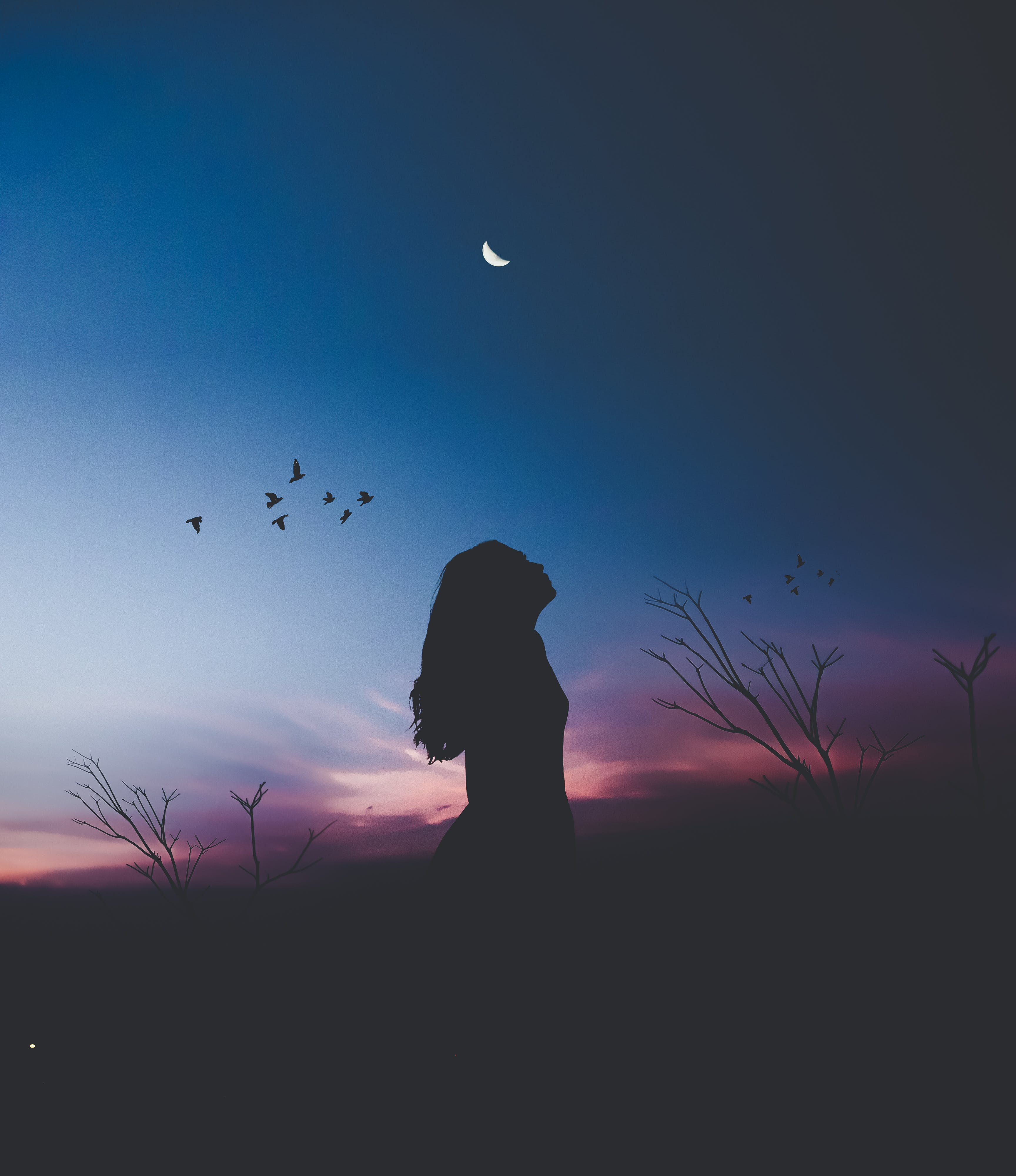Woman Standing on Field Silhouette Photography