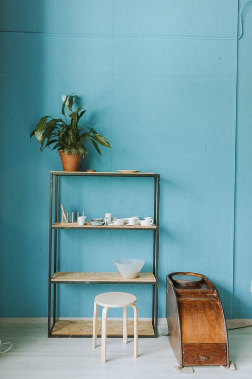 Green Potted Plant on Brown Wooden Shelf