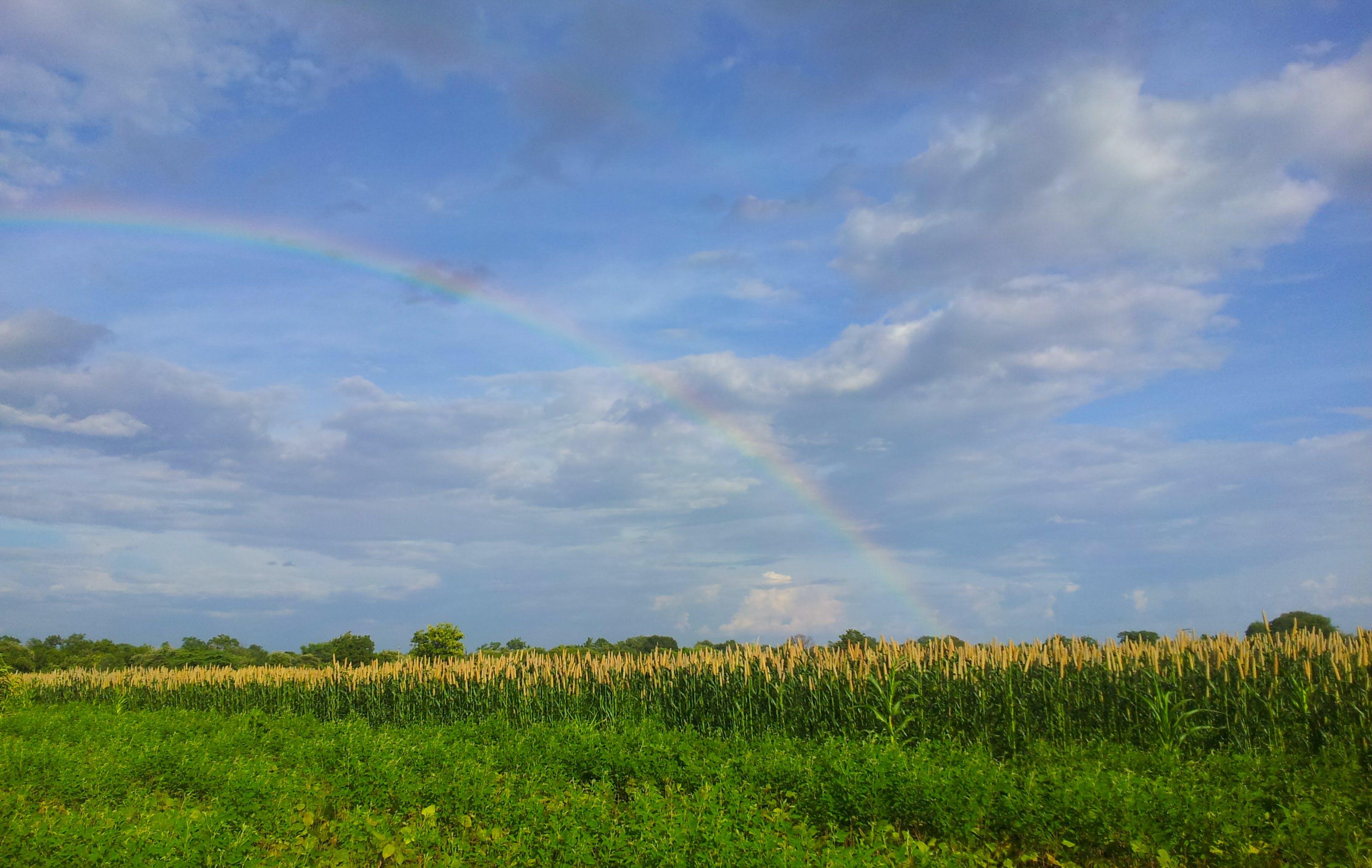 Kostenloses Stock Foto zu blauer himmel, regenbogen
