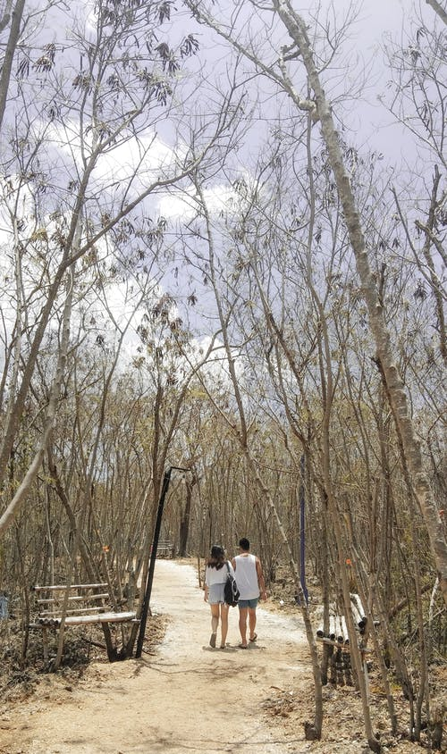 Man and Woman Walking on Pathway Surrounded by Trees