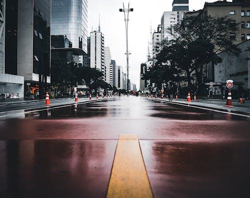거리, 건물, 고속도로, 고층 건물의 무료 스톡 사진