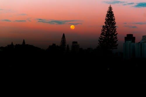 Gratis lagerfoto af #moon #nature #sunrise #day #sky